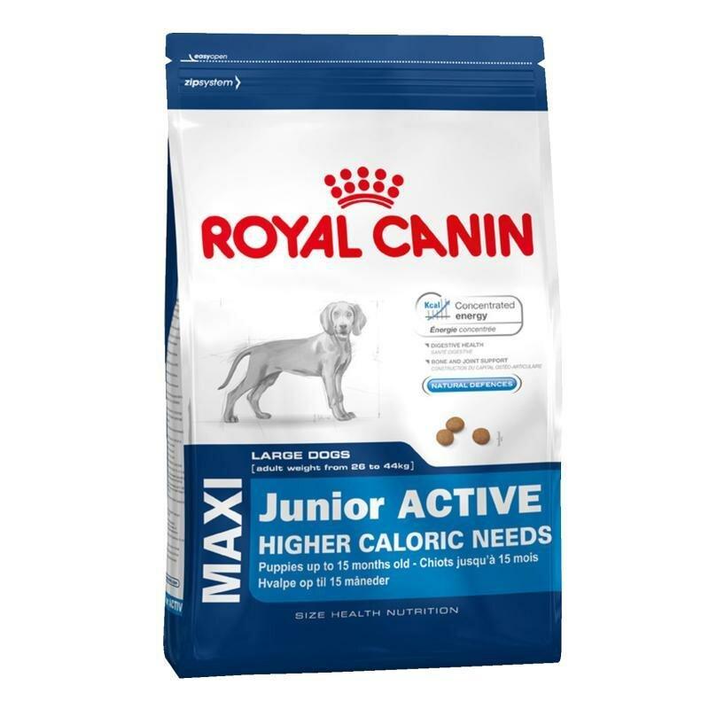 Сухой корм Royal Canin Maxi junior active для щенков крупных пород от 5 до 18 месяцев, 15кг